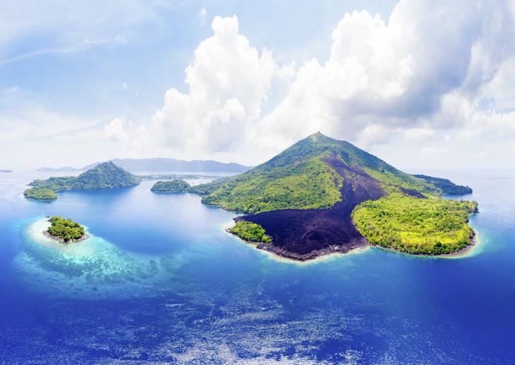 Фото №1 - Орех преткновения: как устроена жизнь на «островах специй»