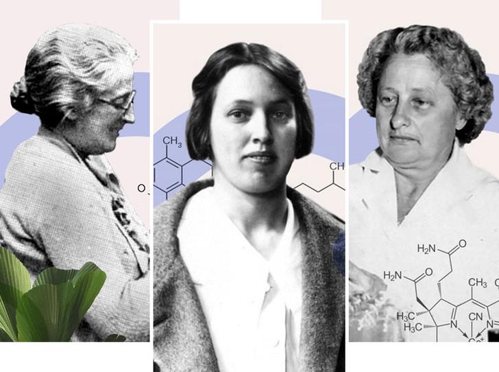 Фото №1 - «Для женщин— за женщин»: истории исследовательниц, стоявших у истоков открытия витаминов