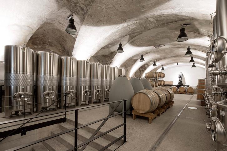 Фото №5 - Оттенки серого: винодельня в Австрии