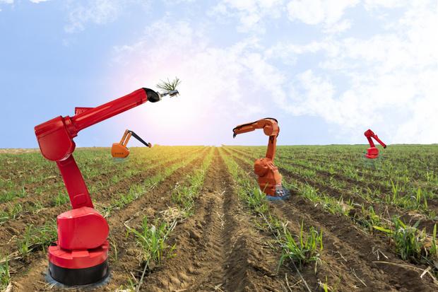 Фото №13 - Новый робот борозды не испортит. Об успехах сельского хозяйства XXI века