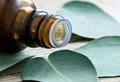 Натуральные эфирные масла — лекарства, созданные природой
