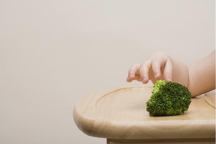 Фото №3 - С чего начинают прикорм в разных странах