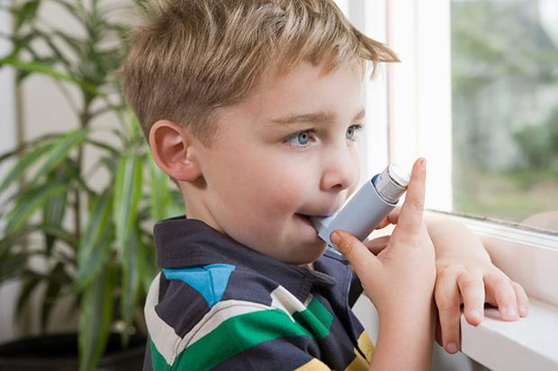 Фото №2 - Респираторный аллергоз