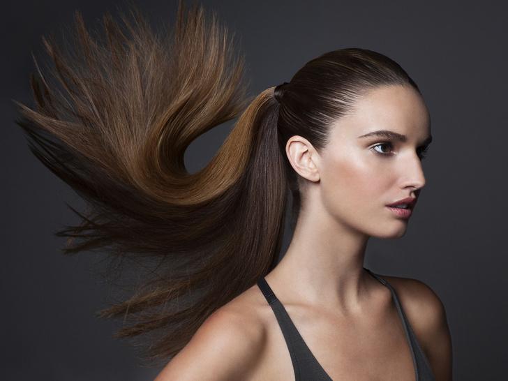 Фото №6 - Как определить свой тип волос (и зачем это нужно)