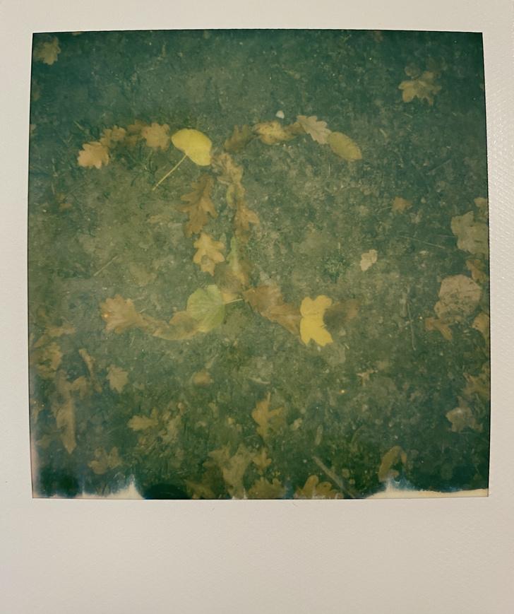 Фото №12 - Французский дневник Кристен Стюарт, который чудом попал к нам