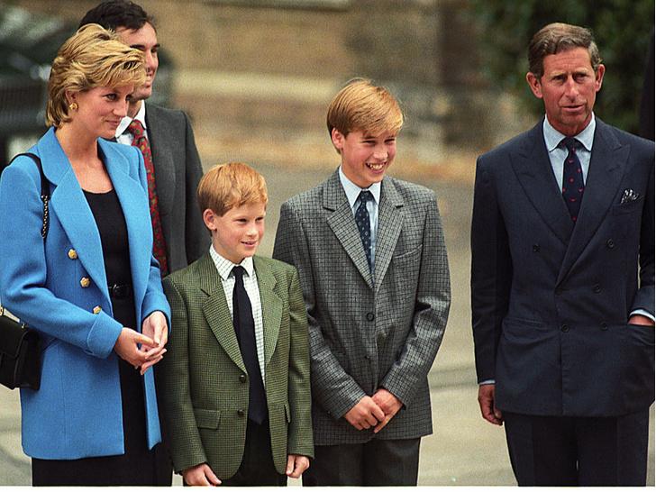 Фото №2 - Лучший наследник: почему Диана считала, что Чарльз должен уступить престол Уильяму