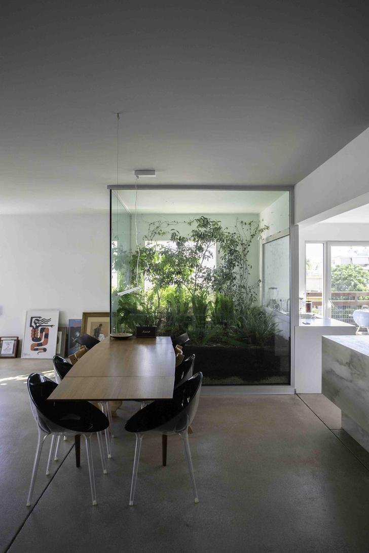 Фото №4 - Квартира с оранжереей в Афинах