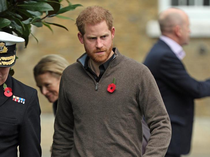 Фото №1 - Сомнительные привилегии: ради чего принц Гарри может отказаться от всех титулов