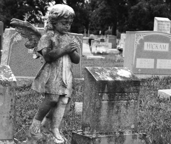 Голландские ученые ради исследования выкопали на кладбище 874 детские челюсти