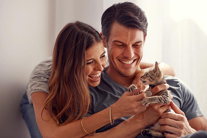 Фото №1 - Личный опыт: отдала котенка обратно и завела грызунов