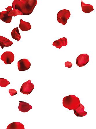 Фото №2 - К чему снится кровь: что говорят сонники и психологи