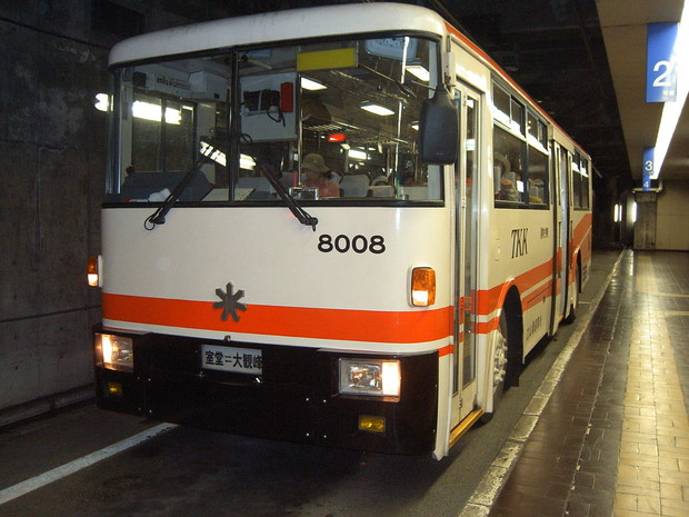 Фото №9 - 8 необычных троллейбусов, которые сломали шаблон