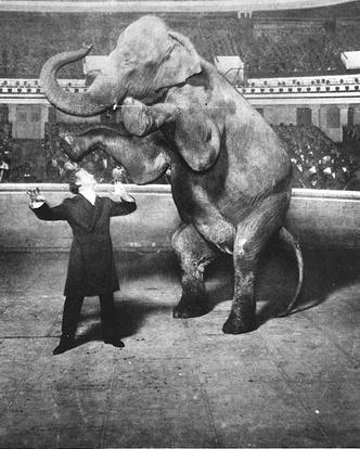 Фото №2 - Следите за руками: 5 знаменитых трюков Гарри Гудини, секрет которых удалось раскрыть