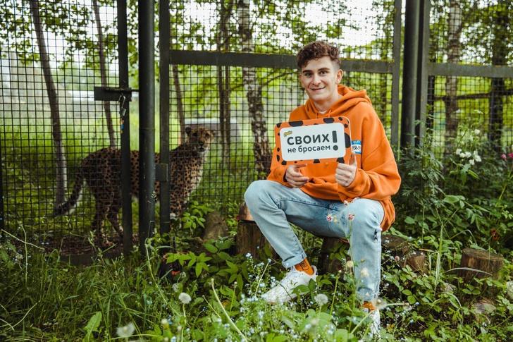 Фото №1 - «Клуб друзей»: Cheetos помогает гепардам в Московском зоопарке