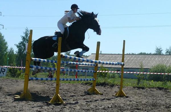 Фото №41 - Девушки на коне: самые романтичные наездницы Ульяновска