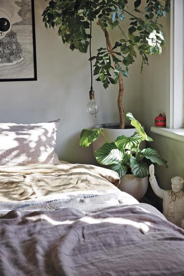 Фото №6 - Природные мотивы в спальне: советы и идеи