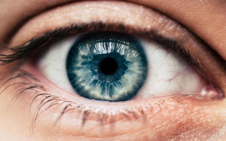 Фото №1 - Ученые установили, что интеллект зависит от размера зрачка