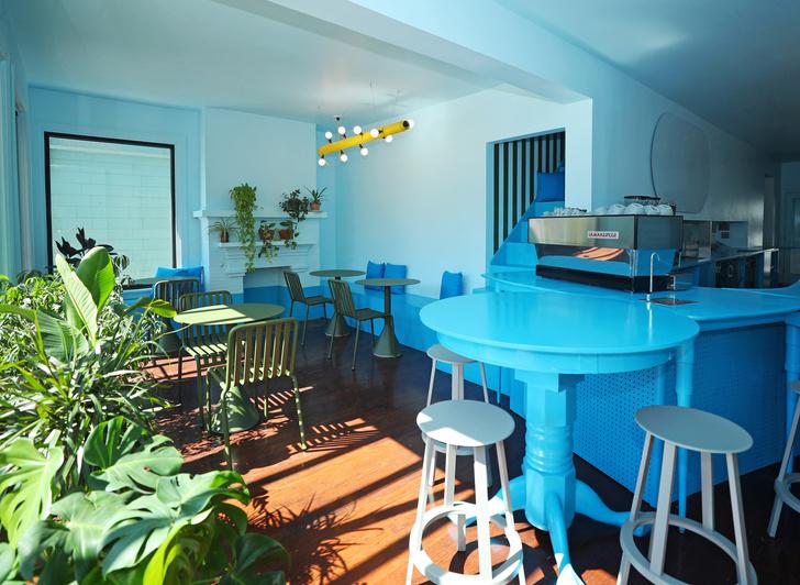 Фото №1 - Голубое кафе Tipico Coffee в Буффало