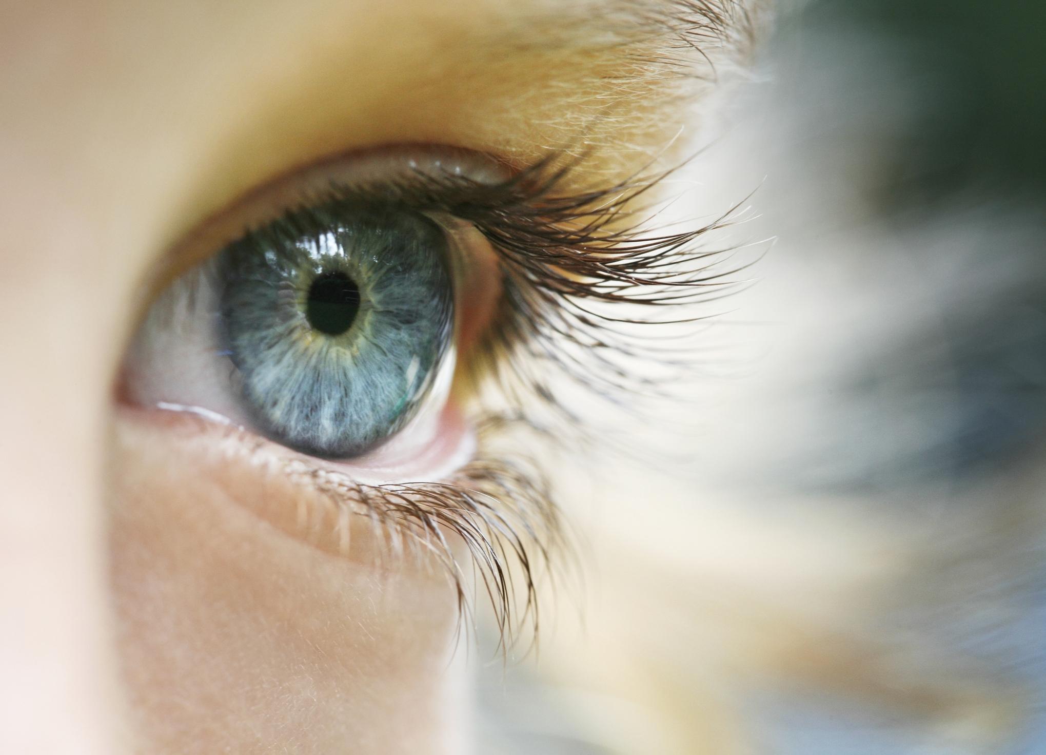 Доминирующие цвета глаз