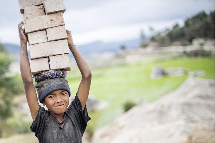 Фото №1 - Распилить поровну: деревня фуа-гра, кирпичи на самогоне и алюминиевая столица Мадагаскара