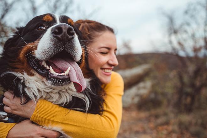 Фото №1 - Свежее дыхание: нужно ли чистить зубы собаке