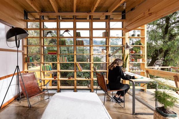 Фото №5 - Кабинет мечты на крыше для ученого-микробиолога