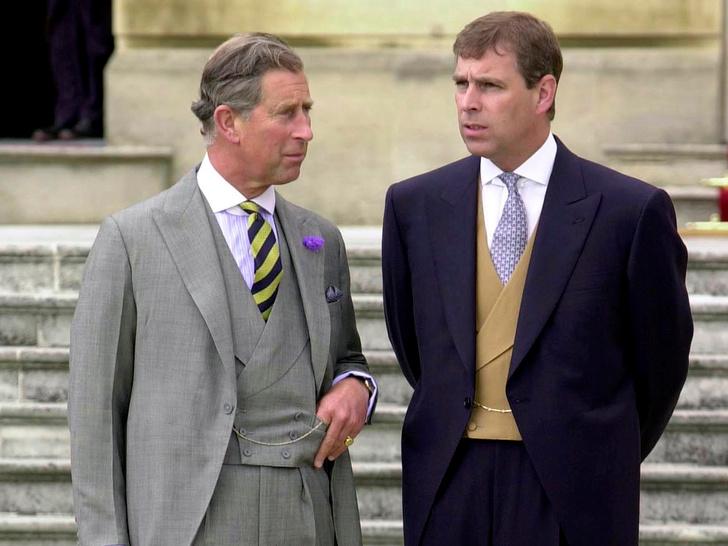 Фото №2 - Вражда других королевских братьев: что не поделили принцы Чарльз и Эндрю