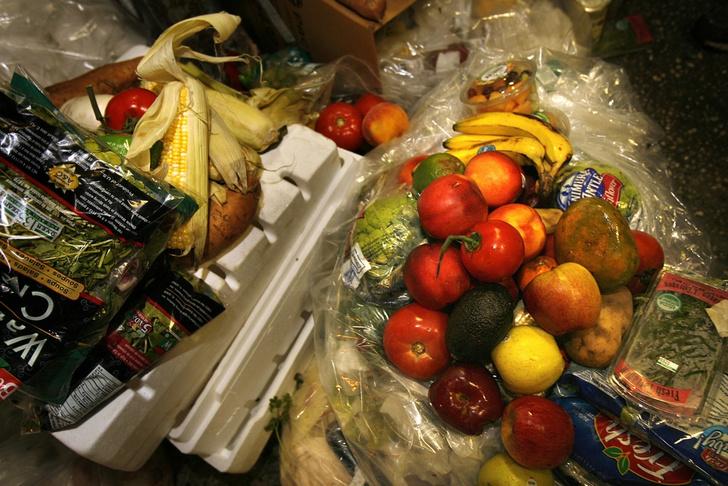 Фото №3 - Нашли на помойке: кто такие фриганы и зачем они питаются мусором
