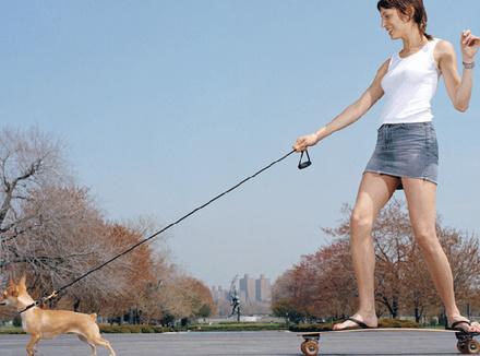 Женщина с собакой на скейтборде