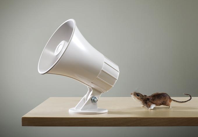 Мышь и мегафон