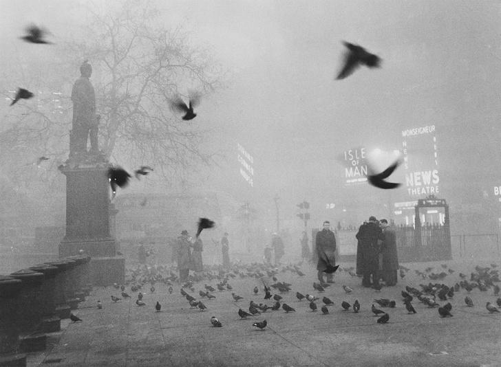 Фото №2 - Туман-убийца: как Великий смог в Лондоне забрал жизни тысяч людей