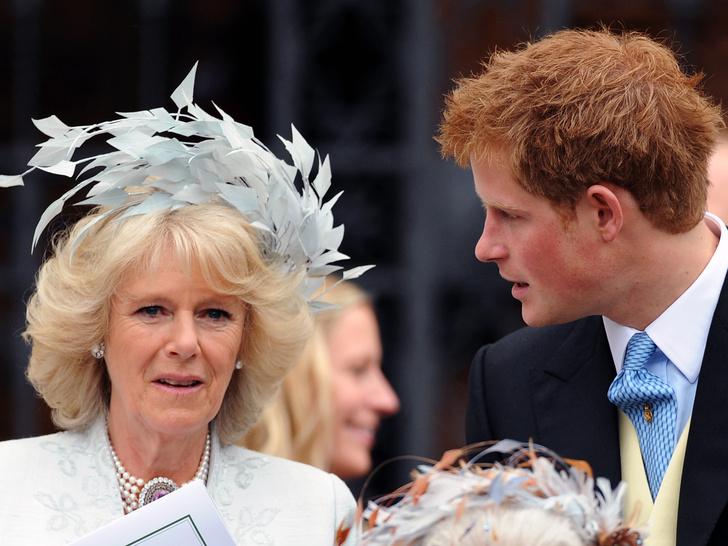 Фото №3 - Мать и мачеха: какие отношения связывают Гарри и Камиллу на самом деле