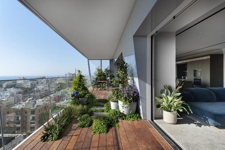Фото №8 - Бетонные джунгли: апартаменты с террасой в Тель-Авиве