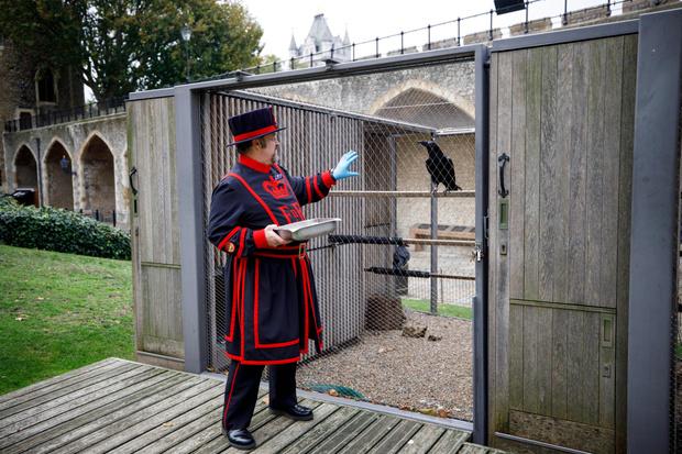 Фото №2 - Дурное знамение: что грозит британской монархии (и при чем здесь вороны и Тауэр)