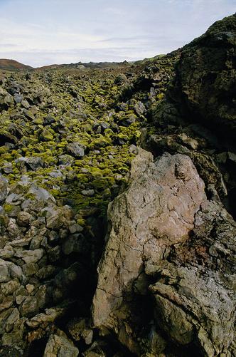 Фото №3 - Сюртсей— самый молодой остров на планете, за которым постоянно следят ученые