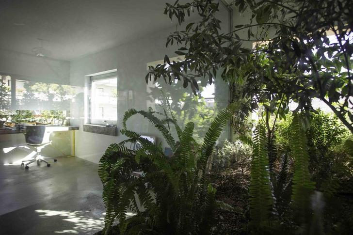 Фото №3 - Квартира с оранжереей в Афинах