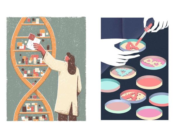 Фото №1 - Зачем нужно сдавать генетические тесты