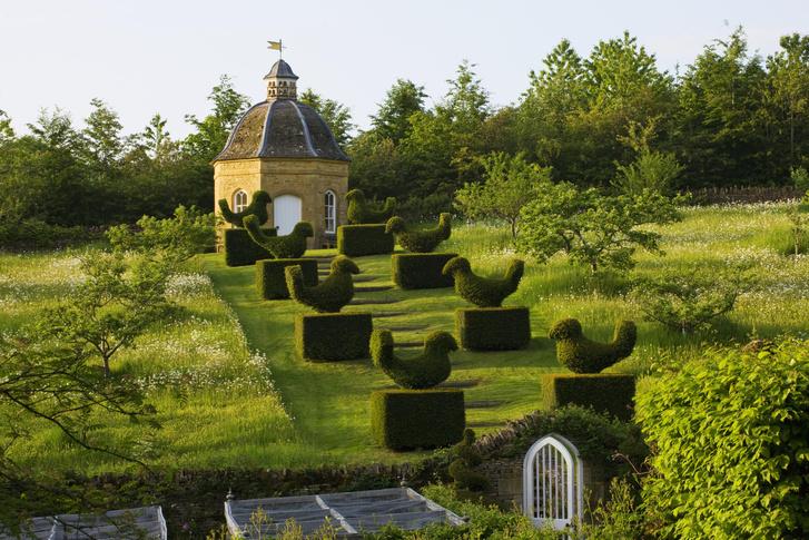 Фото №2 - Английский сад на дачном участке: советы эксперта