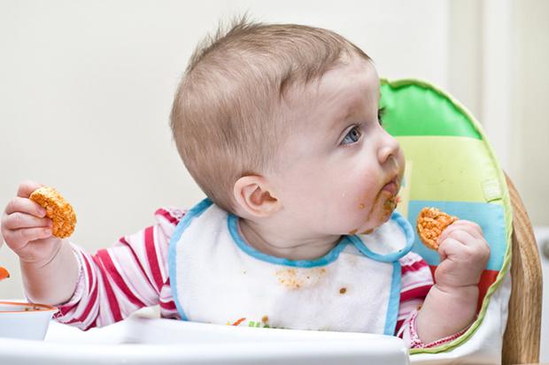 Фото №1 - Едим руками и не толстеем: новый тренд в воспитании
