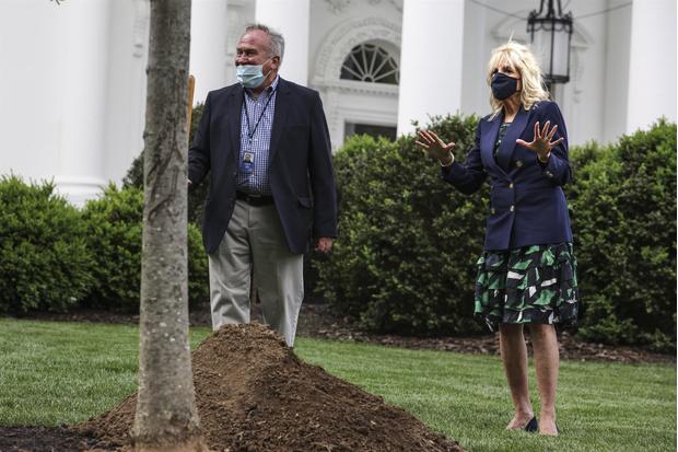 Фото №4 - В лучших традициях Мелании: первая леди Джилл Байден сажает деревья в летящей юбке и на каблуках