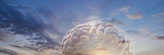 Настоящее и будущее нашего мозга
