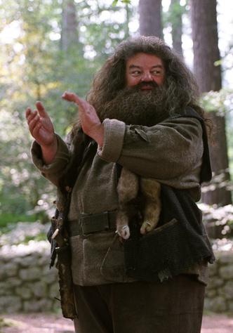 Фото №9 - 10 парочек геров из «Гарри Поттера» и «Игры Престолов», которые могли бы подружиться 😉
