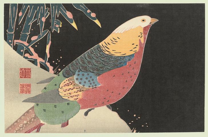 Фото №4 - Онлайн-проект «Восточный адвент-календарь» в Музее Востока