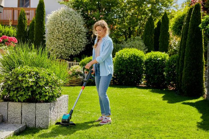 Топ крутых вещей для сада
