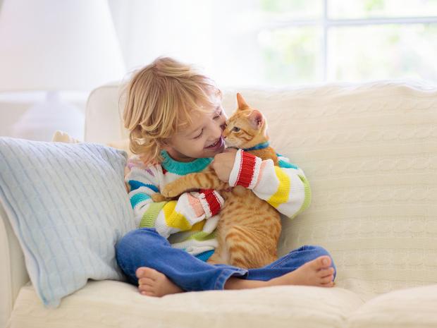 Фото №6 - Отдать нельзя оставить: что делать, если у вас аллергия на домашнее животное
