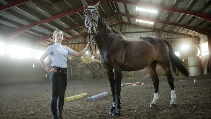 Бизнес-тренинг на лошадях