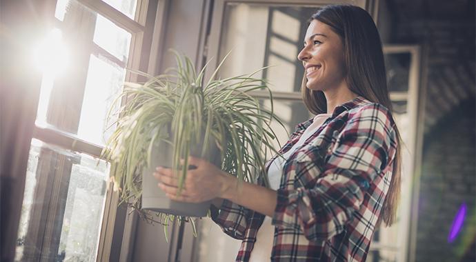 7 способов сделать дом уютнее