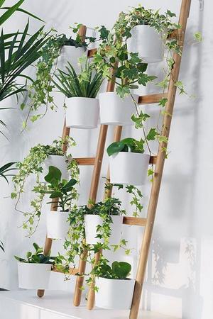 Фото №10 - Маленький балкон: полезные советы по оформлению