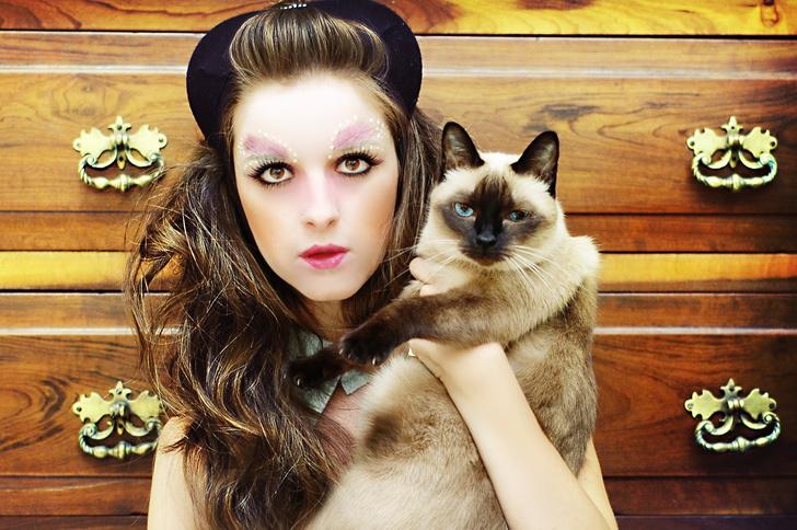 Фото №3 - 30 удивительных фактов о кошках, которые вы могли не знать