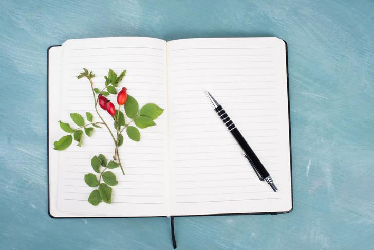 Фото №4 - Что подарить на День учителя: 10 идей необычных подарков
